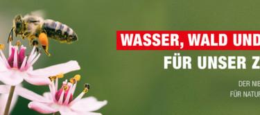 Bild einer Biene auf einer Blüte als Symbol für den Niedersächsischen Weg